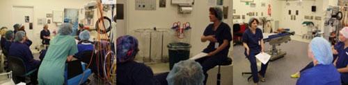 Tanya-Danielle Gillis - Mount Hospital Emotional development Day
